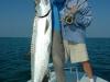 bh-fish22