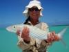 los-roques-fish17