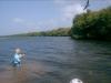 los-roques-fish31