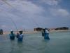los-roques-fish43