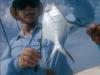 los-roques-fish48