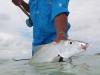 costa-de-cocos-fish01