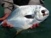 costa-de-cocos-fish15