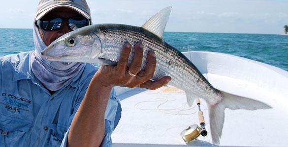 El Pescador - bonefish