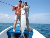 holbox-tarpon-fish10
