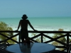 holbox-tarpon-lodge07