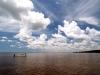 yucatan-tarpon-scene-ids01