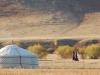 mongolia-taimen-fishing-camp11