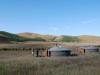 mongolia-taimen-fishing-camp20