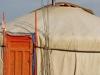 mongolia-taimen-fishing-camp22