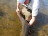 mongolia-taimen-fishing20