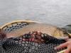 mongolia-taimen-fishing42