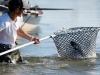 upper-trip-taimen-mike-greener-flyfishing-1000x600