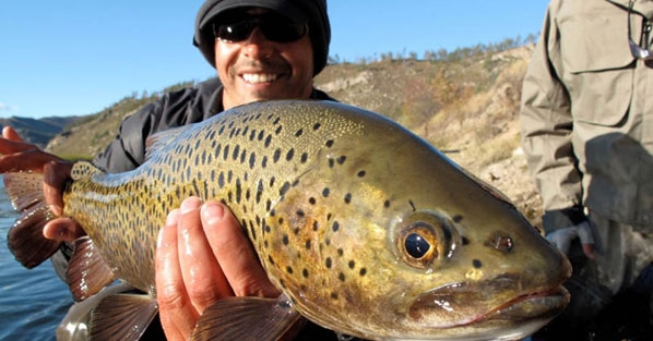 trout-fly-fishing-mongolia