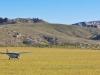 upper-trip-cessna-caravan-fishing-mongolia-1000x600