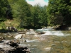 paloma-river-scene12