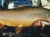 patagonia-fishing07
