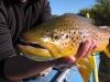 patagonia-fishing10
