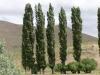 patagonia-scene08
