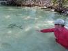 pesca-maya-fish21