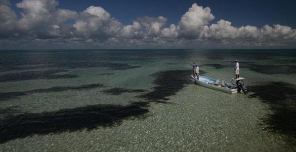 pesca-maya-header01