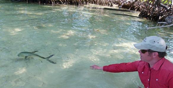 pesca-maya-header05