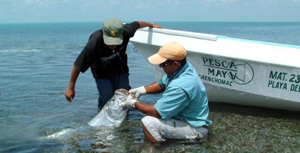 pesca-maya-header08