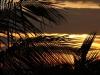 pesca-maya-scene07
