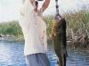 pira-flyfishing-dorado041