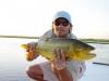 pira-flyfishing-dorado049