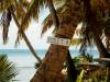 rg-island30