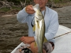 rio-lagartos-tarpon-fish14