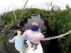 rio-lagartos-tarpon-fish17