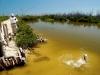 rio-lagartos-tarpon-fish29