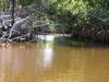 rio-lagartos-scene07
