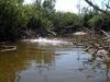 rio-lagartos-scene08