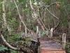 rio-lagartos-scene25