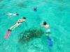 tf-atoll-snorkel