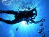tiamo-diving07