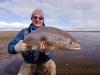 villa-maria-brown-trout33