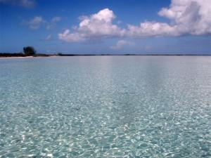 Flats fishing Bahamas - Stella Maris