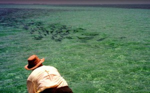 Flyfishing for tarpon in Florida Keys