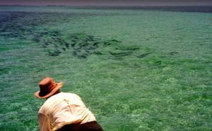 Flyfishing for tarpon in Florida Keys