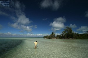 fly fishing day trips out of Cancun, Plaa del Carmen, Tulum, and Cozumel.