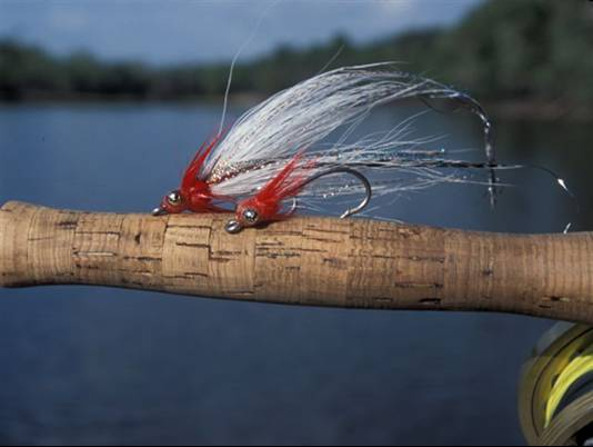 Fly Fishing the Amazon with River plate Outfitters for the best peacock bass fishing in the world.