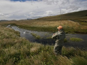 Deep in the heart of Chile's Patagonia region are hundredss of miles af spring creeks filled with big trout all within easy reach of Cinco Rios Lodge.