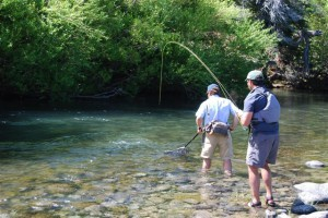 Fly Fishing Chile at Futa Lodge deep in the patagonia region, where wild trout eat dry flies with abandon