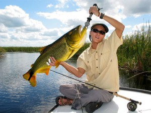 fly fishing for dorado in northern Argenina's Pira Lodge