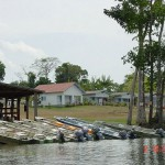 In the Amazon region of Brazil is a lodge called Thaimacu dedicated to fly fishing for peacok bass and many otherspecies