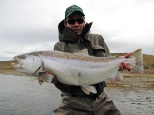 Fly fishing for sea run brown trout at the Villa Maria lodge in Tierra del Fuego Argentina